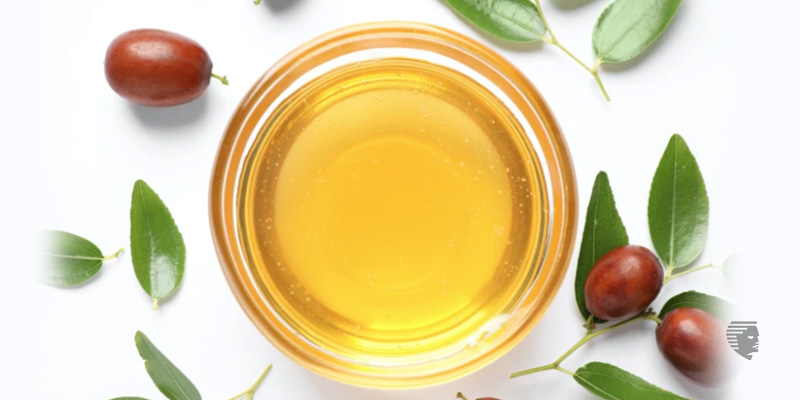 Amazing Benefits of Jojoba Oil for Hair Growth & How to Use It - AHS UAE